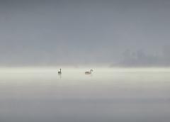 Lake Curalo, Eden