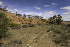 Red Banks Conservation Park near Burra  (Image ID 28165)