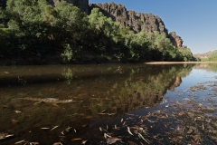 Windjana Gorge, Kimberley  (Image ID 32516)
