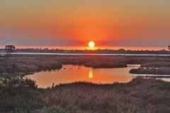 Coodanup/Creery Wetlands, Mandurah  (Image ID 35937)