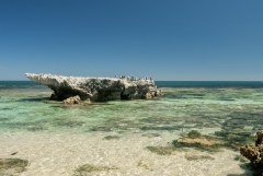 Trigg Island (from Trigg Beach) (Image ID 39436)